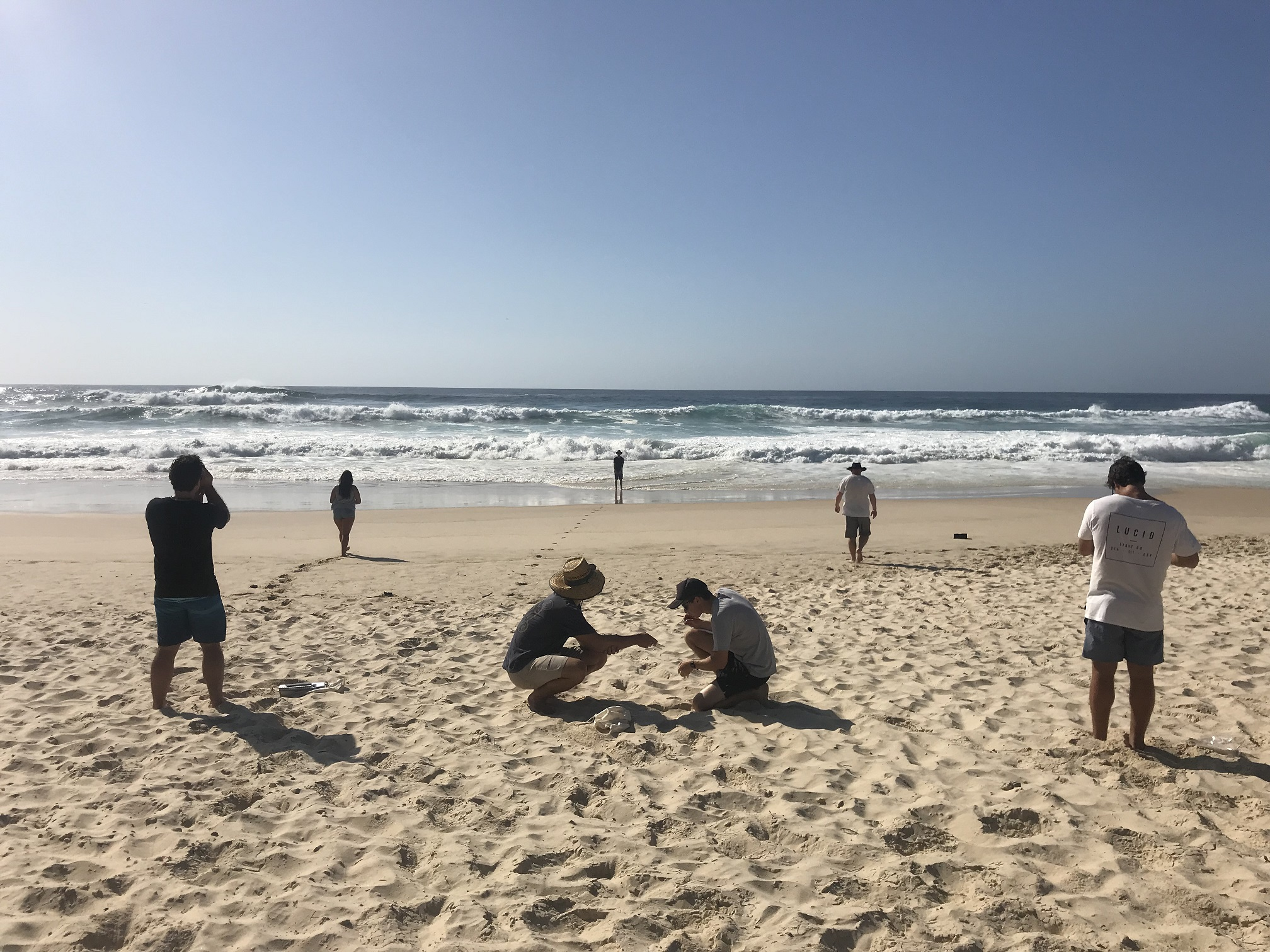 Assessing beach morphology using clinometers, sand grain size estimators and handlenses