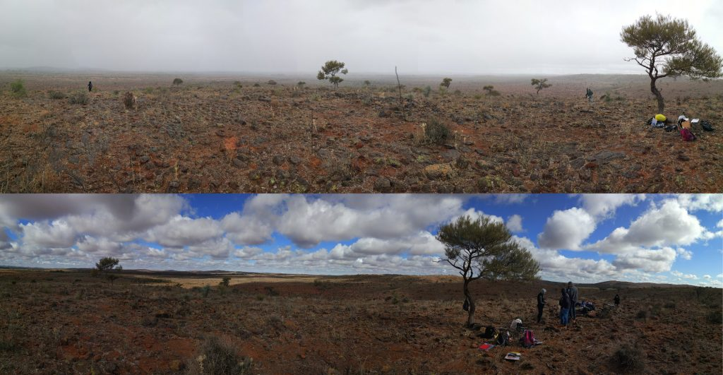 Broken Hill panoramas